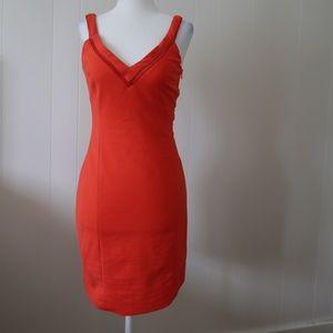 Trafaluc Collection by Zara Dress